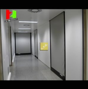 China Supplier Fast Moving PVC Soft Curtain High Speed Industrial Door (Hz-FC04510) pictures & photos
