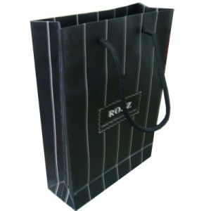 Customized Paper Shopping Bag with Handle for Packing (SW109) pictures & photos