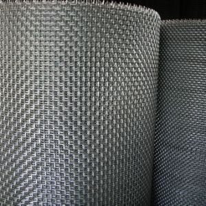 All Kinds of Material Fence Mesh/Crimped Wire Mesh pictures & photos