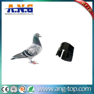 Wireless ABS RFID Pigeon Ring Tag with 100000 Times Endurance pictures & photos