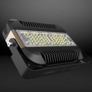 40W Driverless LED Flood Light 10kv Surge Protection IP65 pictures & photos