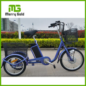 China Factory Supply Best Three Wheel Electric Cargo Bike pictures & photos