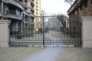Customized Exterior Security Decorative Wrought Iron Fence Door pictures & photos