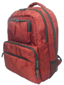 Backpack Laptop Computer Business Popular Camping Leisure 15′′ Laptop Backpack pictures & photos