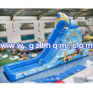Gaint Cartoon Inflatable Water Slide for Adult and Kids pictures & photos