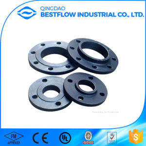 Hot Sale P250gh Carbon Steel Forged Flange pictures & photos