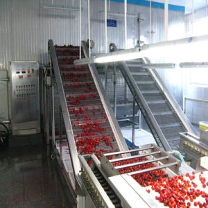 Quick Frozen Raspberry/Freezing Fruit Processing Line, Complete Line Machinery on Sale pictures & photos