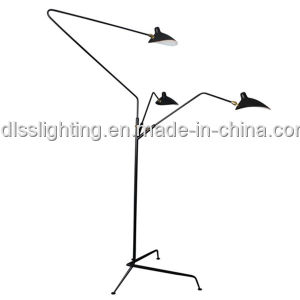 Anitque Creative Decoration Standing Lights for Wholesale pictures & photos