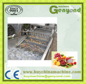 Industrial Food Washing Machine pictures & photos