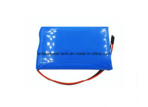 Hot-Sales Li Ion 853048 1200mAh 3.7V Li-Polymer Battery pictures & photos