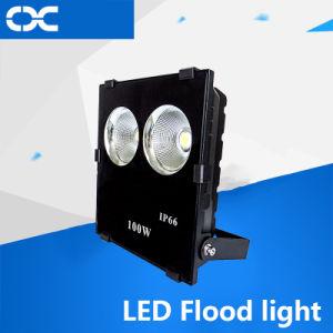 High Lumen Waterproof Outdoor 100W COB LED Flood Light pictures & photos