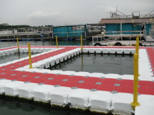 HDPE Floating Dock Plastic Pontoon Cubes pictures & photos