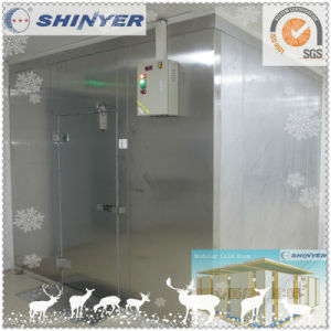 Shinyer Cool Room with Condenser and Evaporator pictures & photos