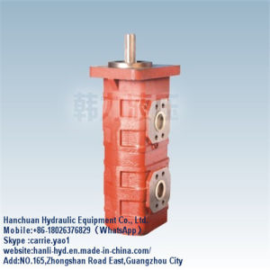 Excavator Hydraulic Double Piston Gear Pump for Construction Machinery (CBGJ2080/1063) pictures & photos