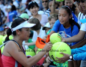 New Inflatable Large Signature Ball pictures & photos