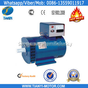 St 24kw Low Speed Alternator Generator pictures & photos
