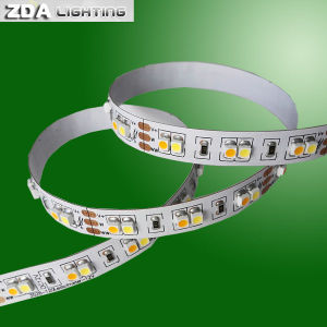 Color Temperature Adjustable Flexible LED Strip Light pictures & photos
