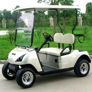 China Marshell Factory Golf Electric Buggy with 2 Seat (DG-C2) pictures & photos