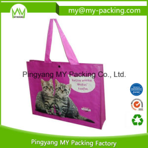 Shopper Bag for Carrying in Supermarket pictures & photos