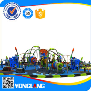 Yl-D042 Fisher Price Outdoor Jungle Gym Playground Equipment pictures & photos