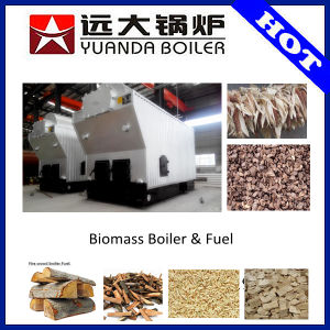 Professional Saving Cost Biomass Wood Boilers for Industry pictures & photos