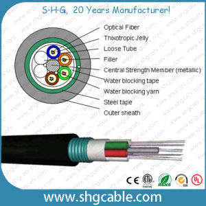 Outdoor Multi Loose Tube Layer Stranded Fiber Optic Cable (GYTS) pictures & photos