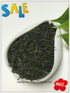 Best Selling Green Tea with Euro Standard pictures & photos