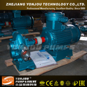 Yonjou Waste Oil Pump (KCB) pictures & photos