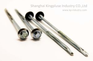 Head Self-Drilling Screw with EPDM Bounded Washer pictures & photos