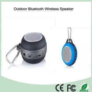 Outdoor Wireless Mini Speaker (BS-303) pictures & photos
