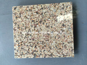 Beautiful Polished Granite Golden Leaf From India pictures & photos