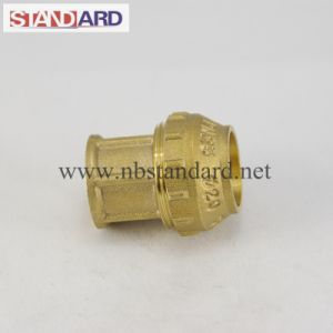PE Straight Coupling Brass Fitting pictures & photos