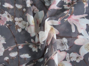 Polyester Chiffon Velvet with Printing pictures & photos