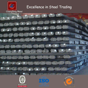 HRB400 Deformed Steel Rebar for Structural Material (CZ-R44) pictures & photos