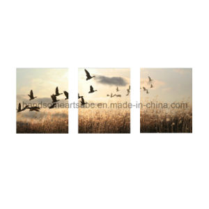 Canvas Wall Modern Painting Art for Decoration - Migrating Birds (PD0028) pictures & photos
