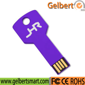 Colourful Key Shape USB Flash Drive 2GB, 4GB, 8GB, 16GB pictures & photos