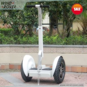 2 Wheel Standing up Folding Electric Bike pictures & photos