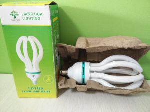 Lotus 50W 65W 75W Energy Saving Light Lamp pictures & photos