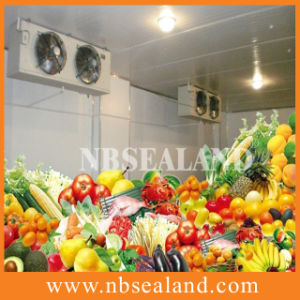 Cold Storage for Vegetable pictures & photos