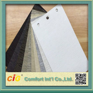 Translucent Roller Blind Window Screen Fabric pictures & photos