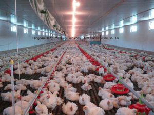 Poultry Equipment with Prefabricated House for One Stop From Factory pictures & photos