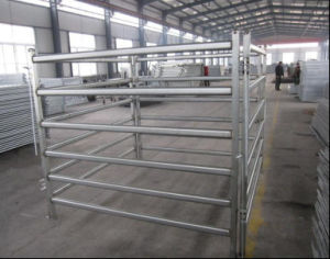 Australian Standard 1.8mx2.1m Standard Corral Horse Yard Panel/Cattle Panel pictures & photos
