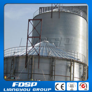 1000-2000t Rice Hull Storag Tank pictures & photos