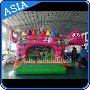 Dragon Inflatable Kids Bouncer Combo pictures & photos