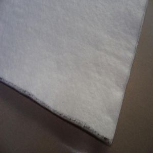 Continuous Filament Needle Punched Nonwoven Geotextile pictures & photos