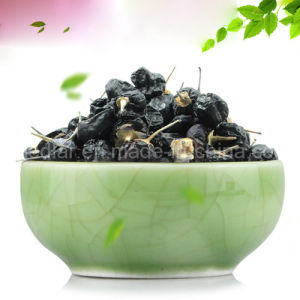 Medlar GMP Manufacture Sample Free Black Wolfberry