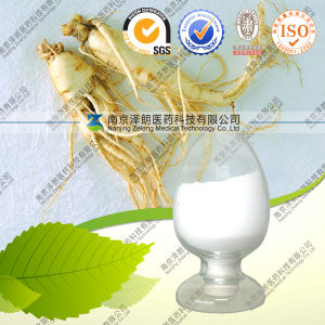 5% 10% 20% 80% Ginsenosides Root Ginseng Extract pictures & photos