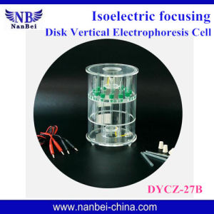 Professional Gel Electrophoresis Apparatus with Factory Price pictures & photos