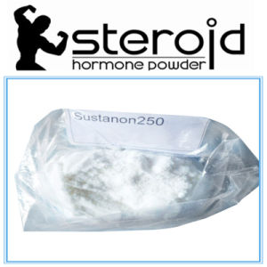 Sustanon250 Sustanon Steroids Powder Manufacturer pictures & photos