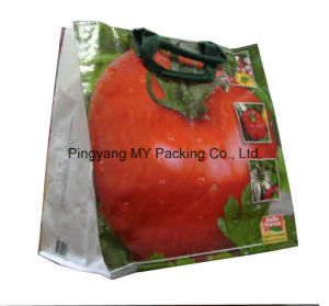 Experienced Eco-Friendly OPP Lamination PP Woven Tote Bag pictures & photos